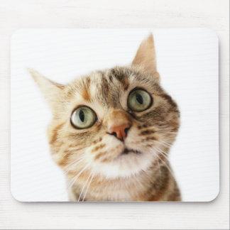 Lil Miss Cattitude Mousemat