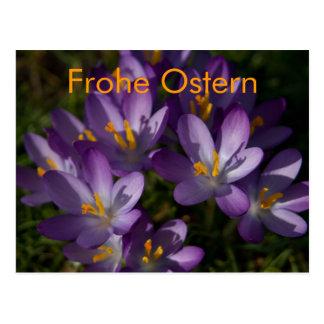 Lila Krokusse • Oster-Postkarte Postcards