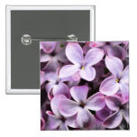 Lilac blossoms pinback buttons