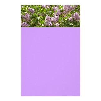 Lilac Bush Beautiful Purple Spring Flowers Stationery