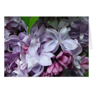 Lilac Dreaming Note Card