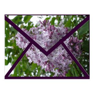 Lilac Envelope Postcard