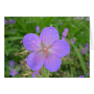 Lilac flower greeting card