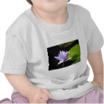 Lilac Flower with Lili Pads at Longwood Gardens Tee Shirts