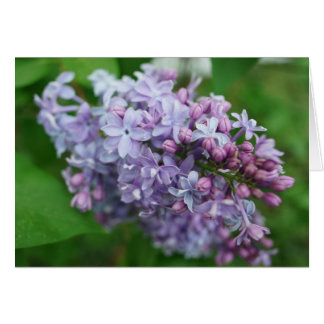 Lilac Love Note Card