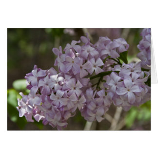 Lilac Note Card