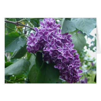 Lilac Notecard Note Card