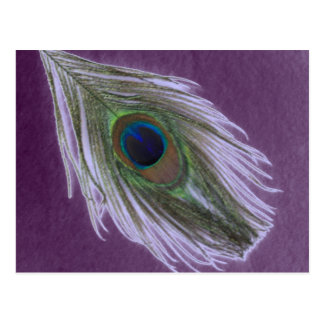 Lilac Peacock Feather D Postcard