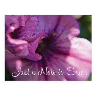 Lilac Petunia Postcard- Hello Postcard
