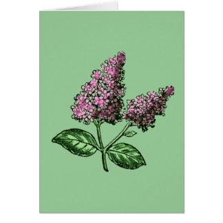 Lilac Purple Flowers Greeting Card