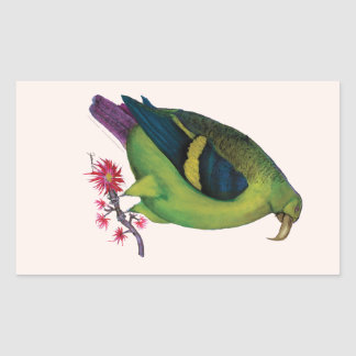 lilac tailed parrotlet, tony fernandes rectangular sticker
