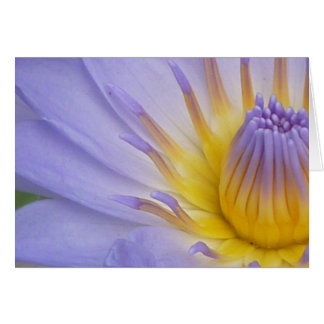 Lilac Waterlily Notecard Greeting Card