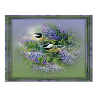 Lilacs Birds Postcard