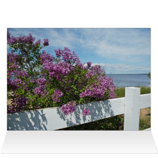 Lilacs by the Water Greeting Card