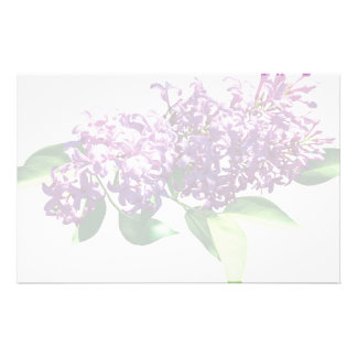 Lilacs in Sunshine Stationery
