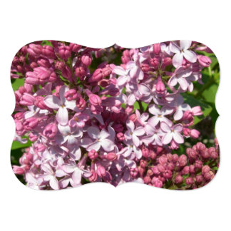 "Lilacs 5"" X 7"" Invitation Card"
