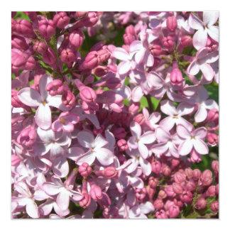 """Lilacs Invitations 5.25"""" Square Invitation Card"""