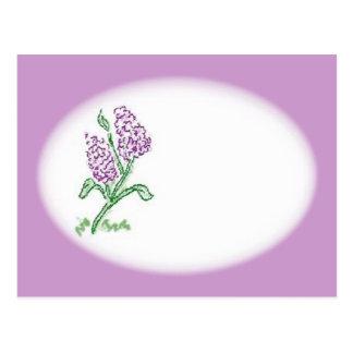 Lilacs Postcard