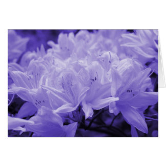 Lilies Lilac Greeting Card