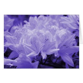 Lilies Lilac Greeting Card