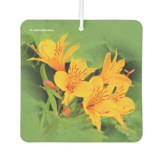 Lily of the Incas / Yellow Alstroemeria Car Air Freshener