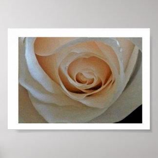 Lins Rose Poster