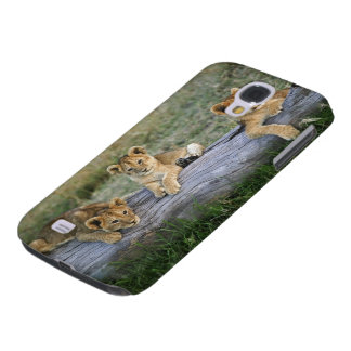 Lion cubs on log, Panthera leo, Masai Mara, 2 Galaxy S4 Case
