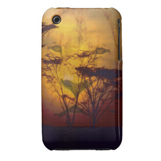 Lion Looking Over African Sunset iPhone 3 Covers