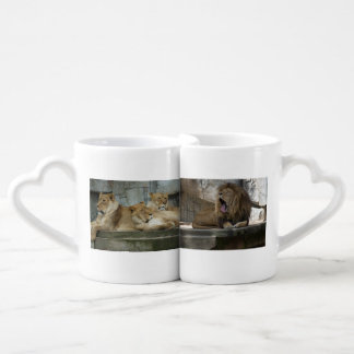 Lion Love Cup of Coffee