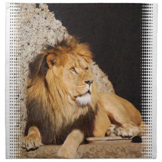 Lion Photo Set of Four Napkins