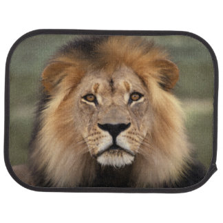 Lion Photograph Car Mat