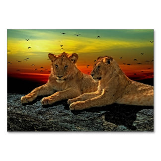 Lion Style Card