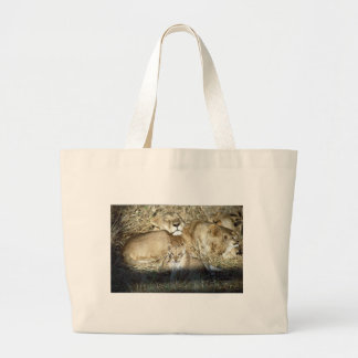 Lions and cub in Botswana Africa Large Tote Bag