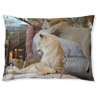 Lion's dog bed