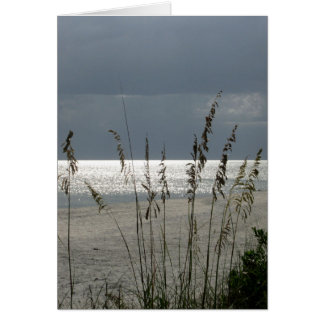 Lit Up Sea Oats Greeting Card