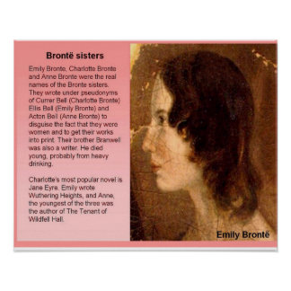 Literature, 19th century, Bronte sisters Poster