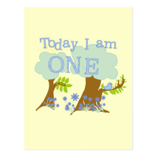 Little Bluebird 1st Birthday Tshirts and Gifts Postcard