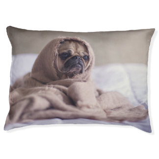 Little doggy feel cold pet bed