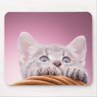 Little funny kitten mouse pad