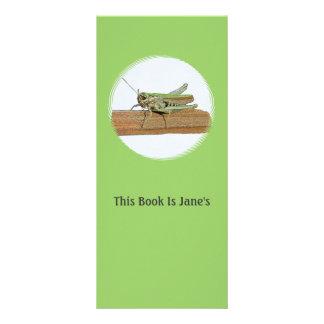 Little Green Grasshopper Cartoon 10 Cm X 23 Cm Rack Card