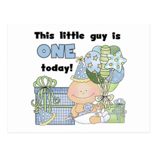 Little Guy is One Tshirts and Gifts Postcard