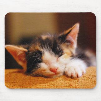 Little Kitty Sleeping Mouse Pad