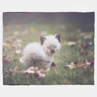 Little Siamese Kitten Blanket