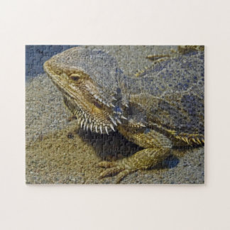 Living Under Fire - Bearded Dragon Jigsaw Puzzle