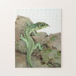 Lizard by E. J. Detmold Jigsaw Puzzle