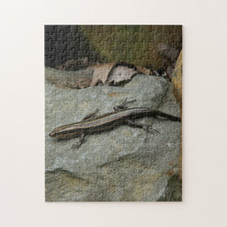 Lizard Photo Puzzle. Jigsaw Puzzle