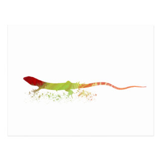 Lizard Postcard