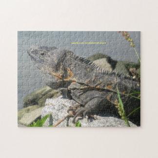 Lizard Rock Puzzle