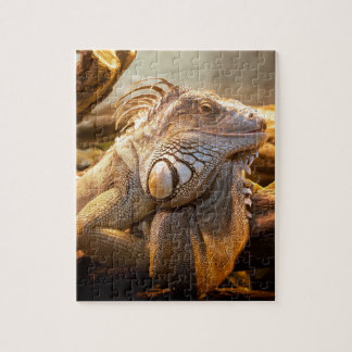 Lizard Up Close Jigsaw Puzzle