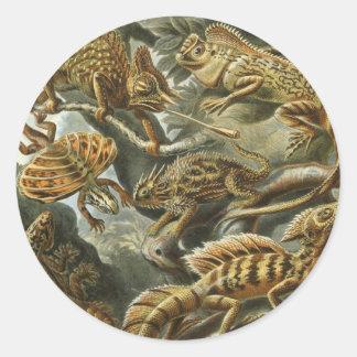 Lizards Classic Round Sticker